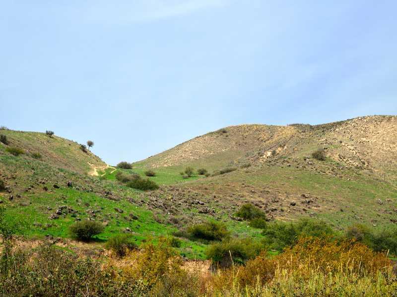 Berg Karmel